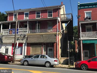 Coatesville Multi Family Home For Sale: 223 W Lincoln Highway