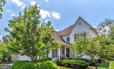 Chester Springs Single Family Home For Sale: 447 Waynebrook Drive