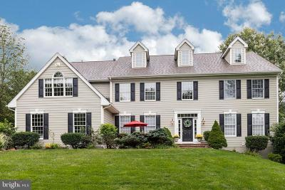 Downingtown Single Family Home For Sale: 1123 Oak Hollow Drive