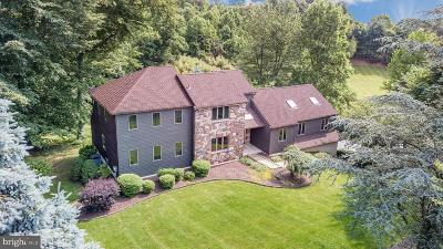 Chester Springs Single Family Home For Sale: 41 Collins Mill Road #B