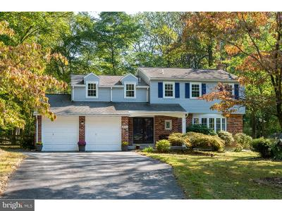 Exton Single Family Home For Sale: 413 Rennard Drive