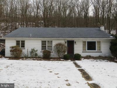 Dauphin County Single Family Home For Sale: 1001 Roberts Valley Road