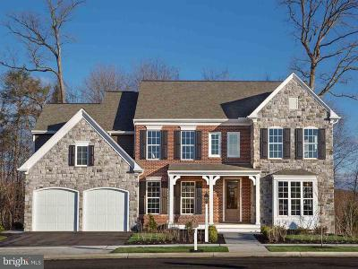 Dauphin County Single Family Home For Sale: 2237 Red Fox Drive