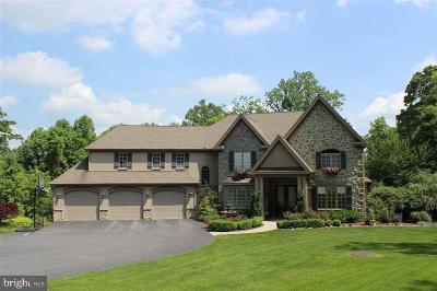 Dauphin County Single Family Home For Sale: 1321 Fox Glenn Drive