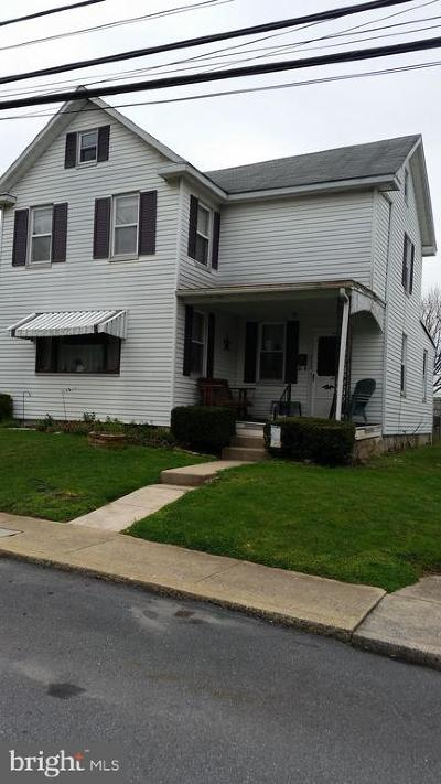 Dauphin County Single Family Home For Sale: 317 Adelia Street