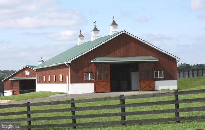 Dauphin County Farm For Sale: 1306 Longview Drive