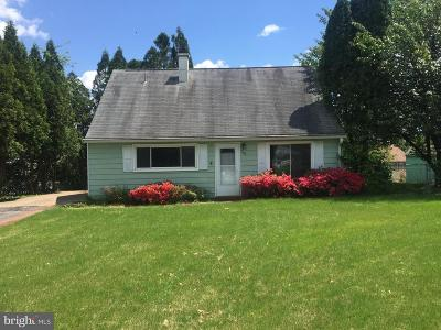 Dauphin County Single Family Home For Sale: 302 Plane Street