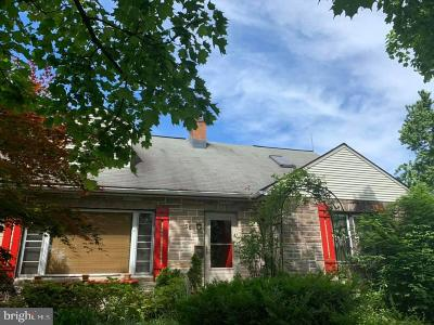 Harrisburg Single Family Home For Sale: 56 S 39th Street