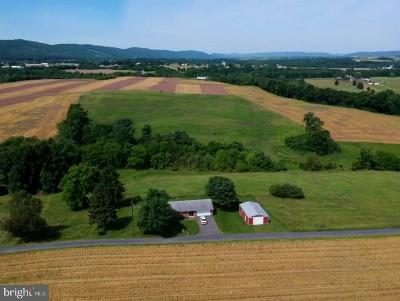 Dauphin County Single Family Home For Sale: 339 Engle Road