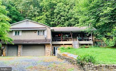 Dauphin County Single Family Home For Sale: 11 Scout Lane