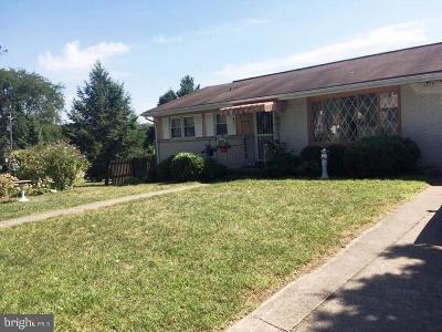 Harrisburg Single Family Home For Sale: 69 Delmont Avenue