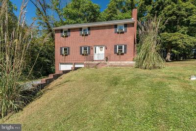 Harrisburg Single Family Home For Sale: 253 Piketown Road