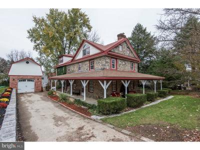 Delaware County Single Family Home For Sale: 109 Chestnut Parkway