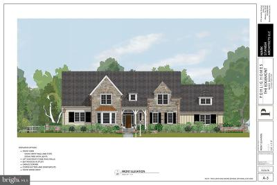 Villanova Single Family Home For Sale: 46 Ivy Lane