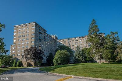 Bryn Mawr Condo For Sale: 1030 E Lancaster Avenue #304