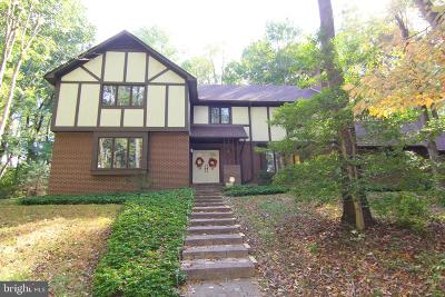 Glen Mills Single Family Home For Sale: 20 Concord Creek Road