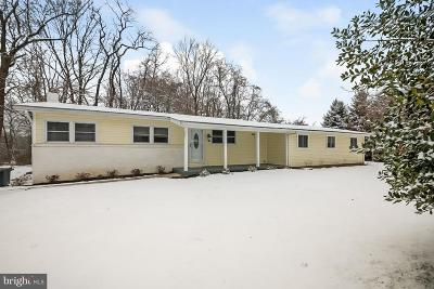Media Single Family Home For Sale: 45 Van Leer Avenue