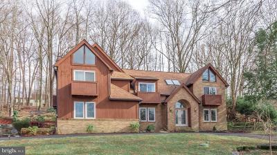 Delaware County Single Family Home For Sale: 119 Cove Lane