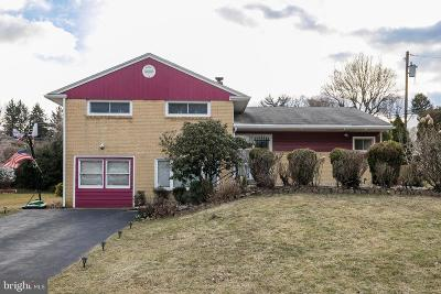 Springfield Single Family Home For Sale: 416 Burns Drive