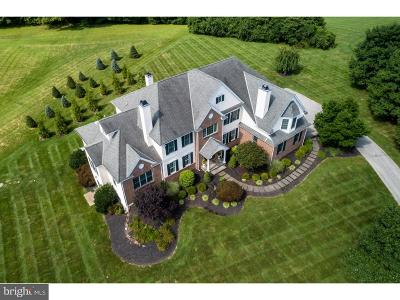Newtown Square Single Family Home For Sale: 46 Thornbird Way