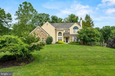 Delaware County Single Family Home For Sale: 10 Allyssa Drive
