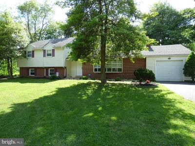 Delaware County Single Family Home For Sale: 566 S Middletown Road
