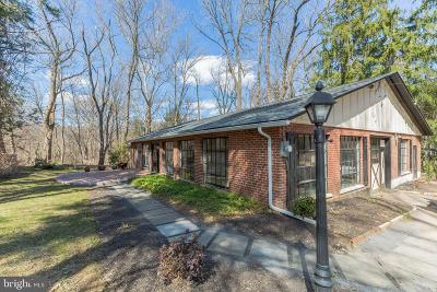 Wayne Single Family Home For Sale: 538 Montgomery Lane