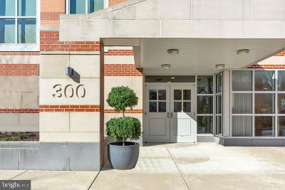 Delaware County Condo For Sale: 332 Iron Works Way