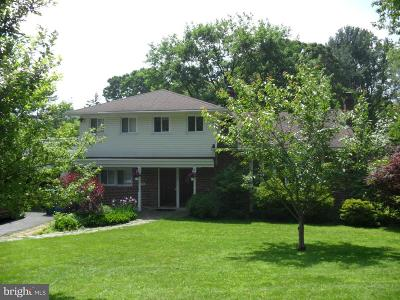 Delaware County Single Family Home For Sale: 184 Mansion Drive