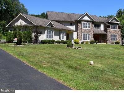 Chadds Ford Single Family Home For Sale: 81 Bullock Road