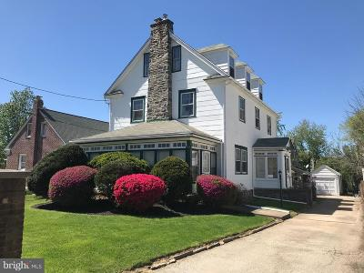 Havertown Single Family Home For Sale: 124 E Eagle Road