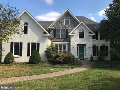 Delaware County Single Family Home For Sale: 7 Stoney End Road