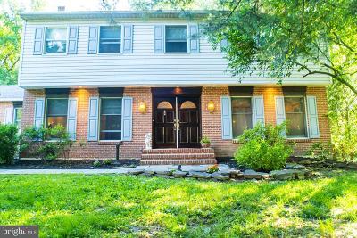 Delaware County Single Family Home For Sale: 4 Morgan Lane