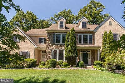 Delaware County Single Family Home For Sale: 20 Kimberly Way