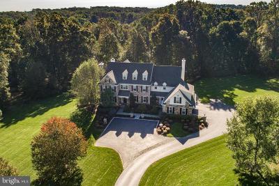 Delaware County Single Family Home For Sale: 44 Farrier Lane