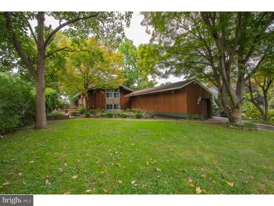 Springfield Single Family Home For Sale: 324 Summit Road