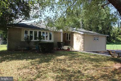 Delaware County Single Family Home For Sale: 3814 Bethel Road