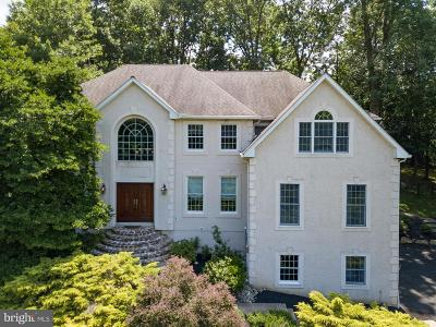 Delaware County Single Family Home For Sale: 811 Cedar Grove Road