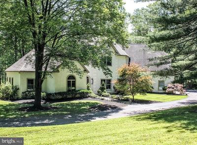 Delaware County Single Family Home For Sale: 100 Smithbridge Road
