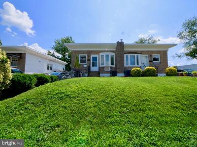 Delaware County Single Family Home For Sale: 205 Hoffman Road