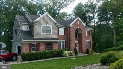 Garnet Valley Single Family Home For Sale: 3245 Sarum Farm Lane