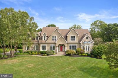 Unionville, Chadds Ford Single Family Home For Sale: 381 Ring Road