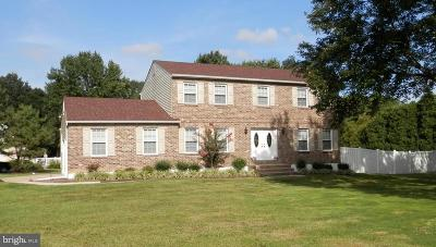 Garnet Valley Single Family Home For Sale: 3796 Link Drive