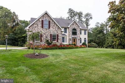 Garnet Valley Single Family Home For Sale: 10 Swan Lake Drive