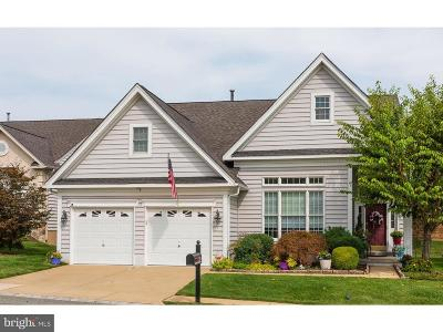 Garnet Valley Single Family Home For Sale: 19 Cassin Hill Drive