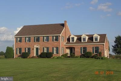 Chambersburg Single Family Home For Sale: 1095 Gayman Road