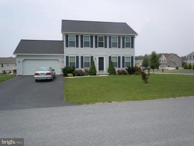 Waynesboro Single Family Home For Sale: 13135 Seneca Drive