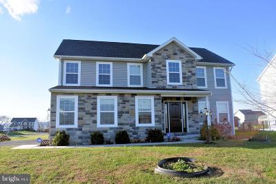Chambersburg Single Family Home For Sale: 1725 Warm Spring