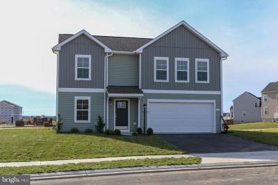 Waynesboro Single Family Home For Sale: Ridge Crest Drive- Carnegie