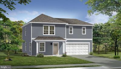 Waynesboro Single Family Home For Sale: Cross Fields Drive- Crafton